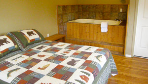 King Jacuzzi Cabin Photo 1